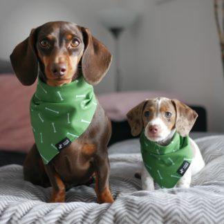 Hondensjaal groen met botmotief