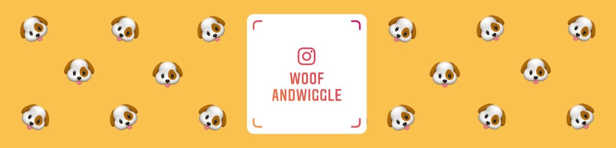 Teaserbild Instagram Verlinkung