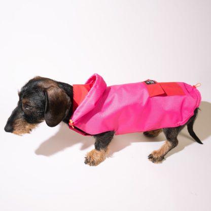 Regenjacke / Anorak für Hunde