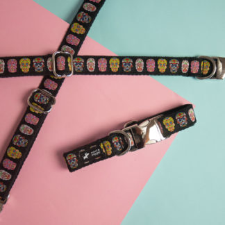 Dog collar woof & wiggle Catrina in Size M