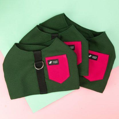 Hundegeschirr Farbe Grün Pink