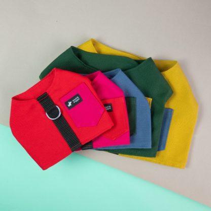 """Farbübersicht Hundegeschirr """"Colorblock"""""""