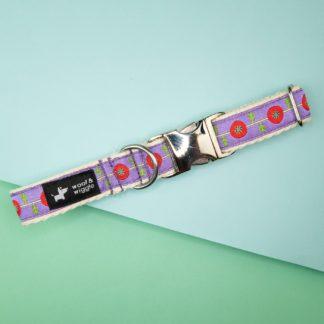 Hundehalsband mit abstraktem Muster Design
