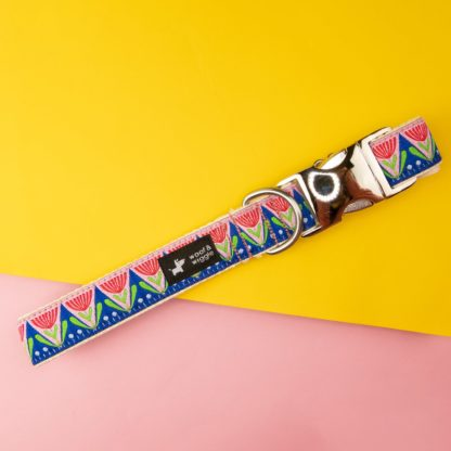 Dog collar with abstract colorful floral design