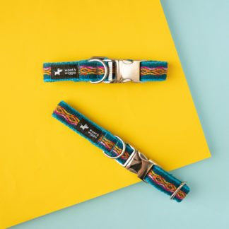 Dog collar woof & wiggle Peru in color turquoise