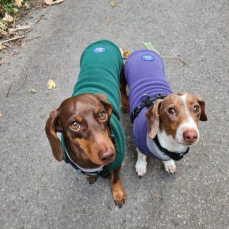 Tailor-made dog jumper