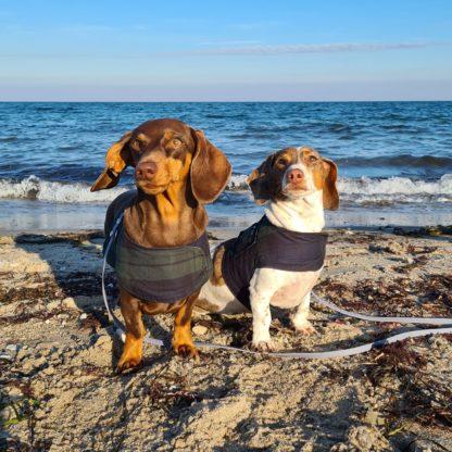 Hunde Geschirr Weste Tartan
