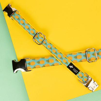 Hundehalsband mit Ananas-Motiv